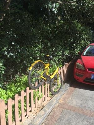 乗り捨て自転車(黄色).jpg