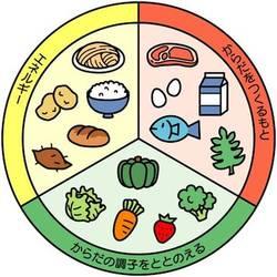 栄養素.jpg