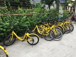 黄色い自転車.jpg