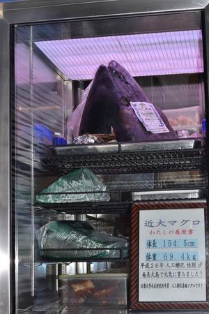 マグロ頭.JPGのサムネイル画像