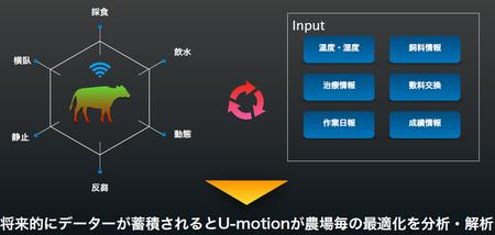 U-motionイメージ.png